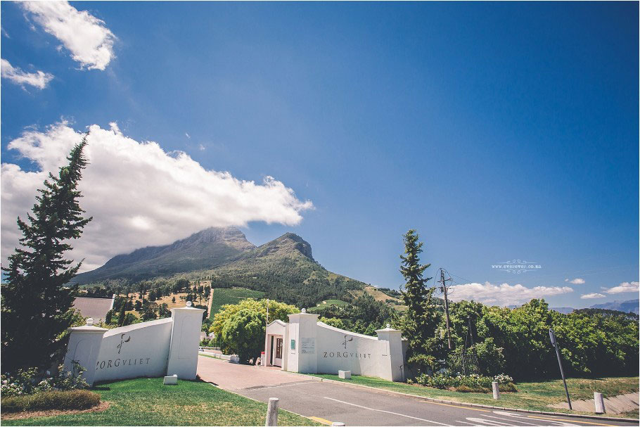 Zorgvliet Wine Estate by Ever Ever Photography