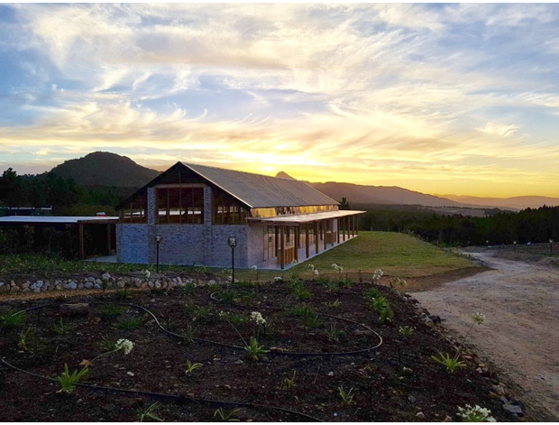 Hemel-en-Aarde-Wedding-Venues-The-One-Heaven-And-Earth