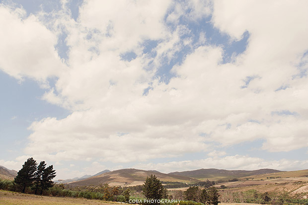 The Surrounds at Blue Gum Country Estate Wedding Venue