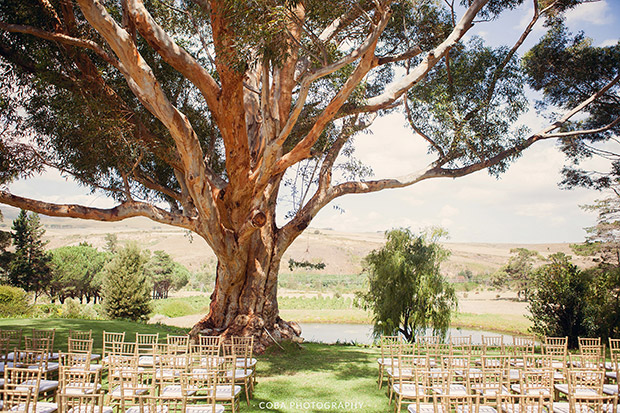 Outdoor Wedding Ceremony Area at Blue Gum Country Estate