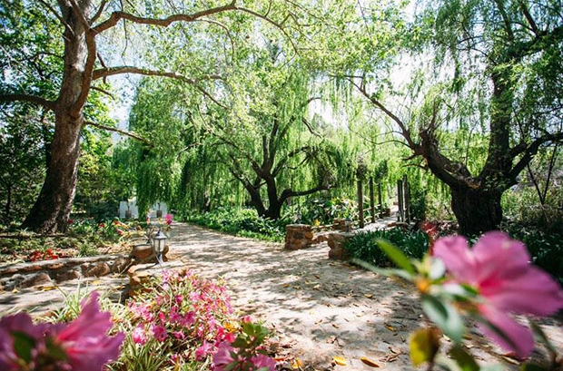Mont Rouge Tulbagh Wedding Venue