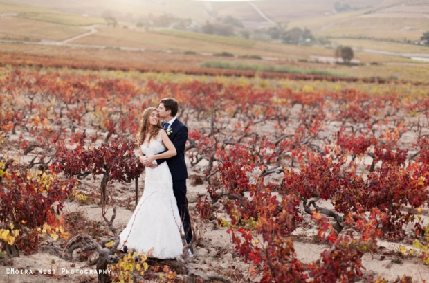 Cape Town Winelands Wedding Venue 401 Rozendal