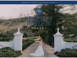 1-Rickety-Bridge-Winery-Wedding-Venue-Franschhoek-Western-Cape-Entrance