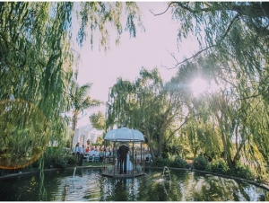 Cape Town Winelands Wedding Venue Zonnevanger