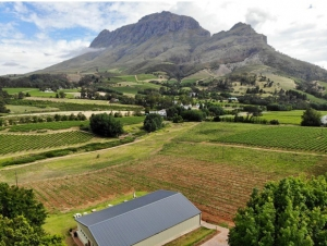 Le Pommier Vineyard Barn Wedding Venue Mountain View and Surrounds