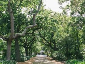 Nooitgedacht_Wedding_Venue_Stellenbosch_Cape_Winelands