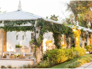 Forum White Light Wedding Venue Outside with Vines